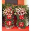开业花篮 财源茂盛 网上订鲜花-全国鲜花包送